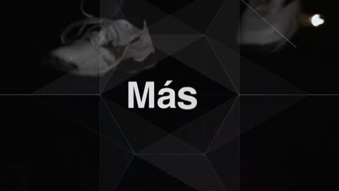 MásqueVoley - T17/18 - Programa 16