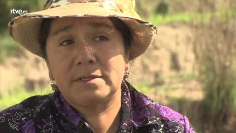 Teresa Huicho Urbano Vicepdta. ANFASEP