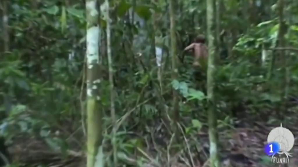 Tiene unos 50 años  y lleva más de 20 viviendo solo en la selva de Brasil