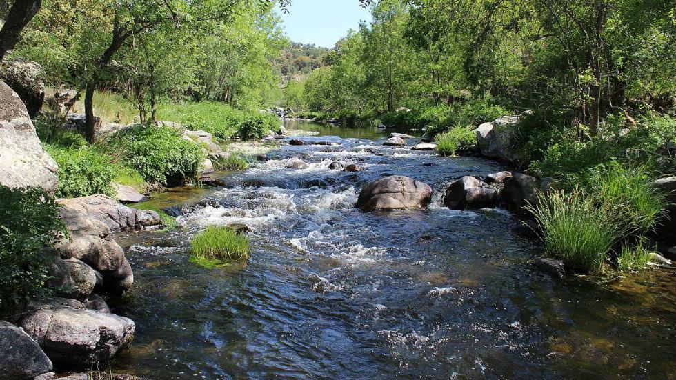 Los ríos - Tiétar