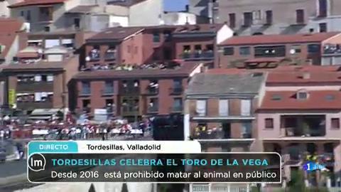 La Mañana - Tordesillas celebra el Toro de la Vega