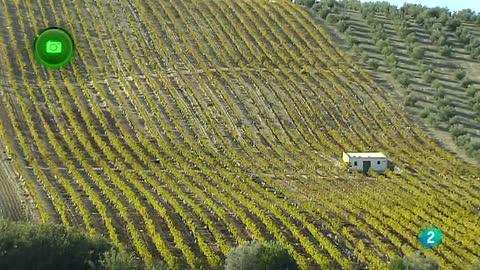 Agrosfera- En clave rural- Montilla