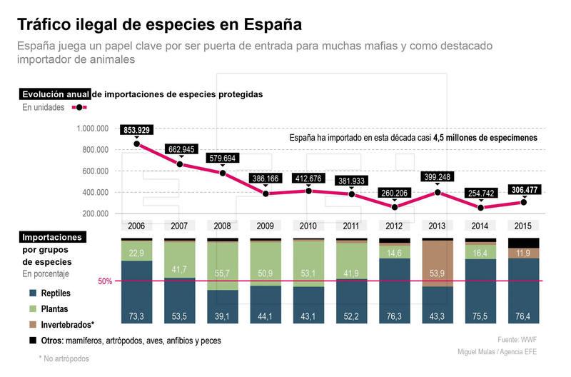 El tráfico ilegal de especies en España. en números. EFE