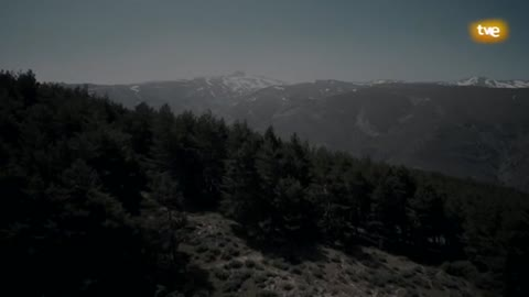 Trail - Ultra Sierra Nevada 2018