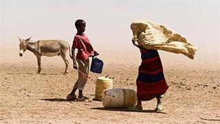 Urge actuar contra el hambre, que causa 40.000 muertes al día en el mundo
