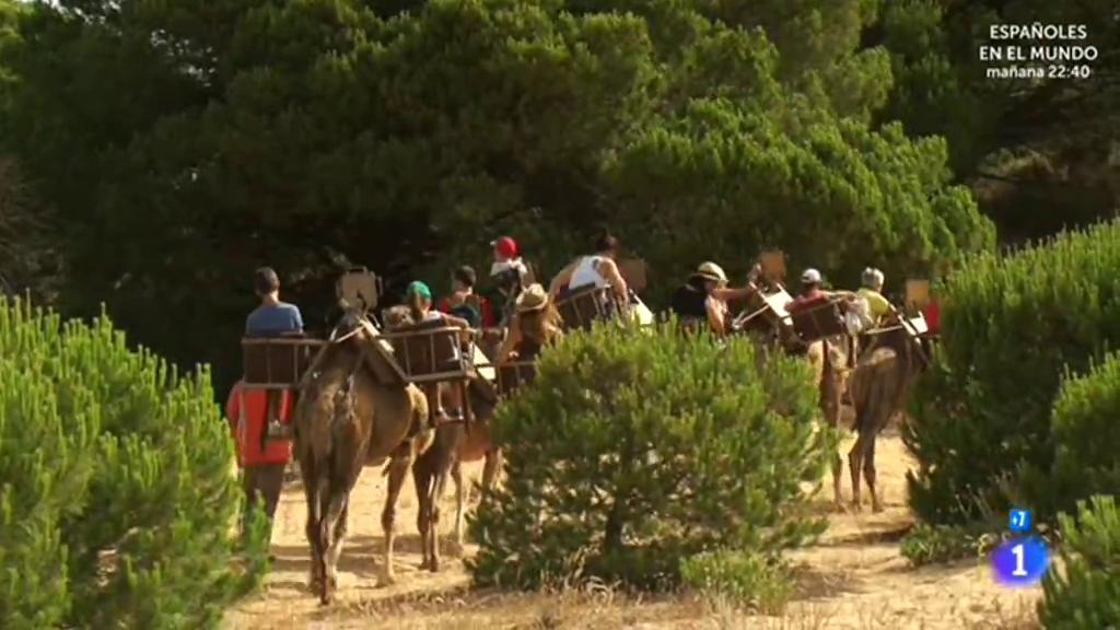 Comando al sol - Vacaciones sin descanso - Las mayores dunas de Europa