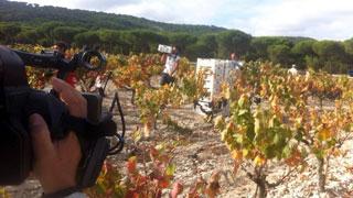 Aquí la Tierra- Vega Sicilia, el rey de los vinos