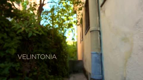 Cartas en el tiempo - Velintonia languidece