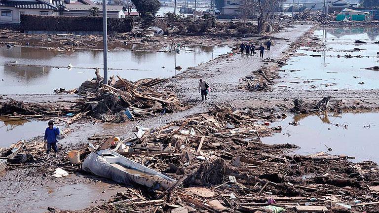 La vida submarina resiste al tsunami que devastó Japón hace un año