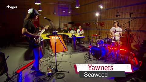 VÍDEO: Proyecto Demo - Yawners, 'Seaweed' - 26/06/18