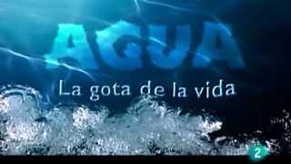 Agua - Una visión global