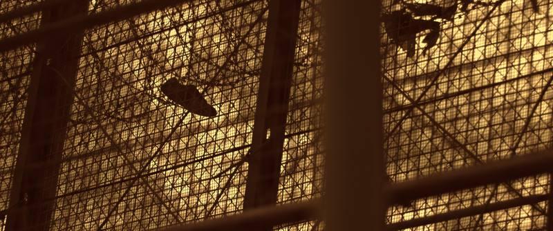 Una zapatilla enganchada en los alambres de la valla que impide el acceso de Marruecos a Melilla