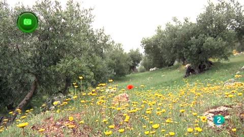 Turismo Rural Zuheros