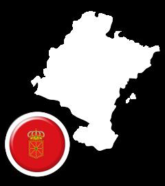 Informativo de Navarra