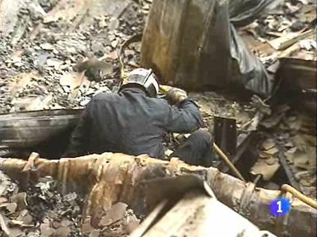 Casco forestal leñador trabajadores forestales casco casco corte casco de protección Tector