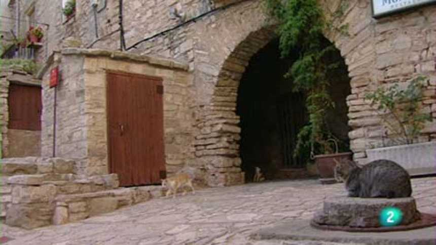 Racons - La Segarra