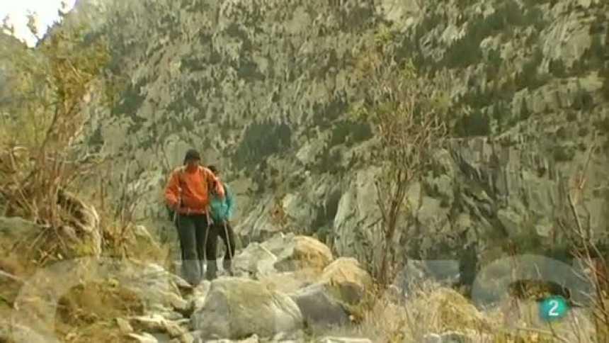 CIMS - Francesc Torralba - Punta Alta