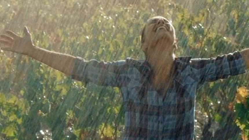 Gran Reserva - La lluvia cae, ¡vendimia hecha!