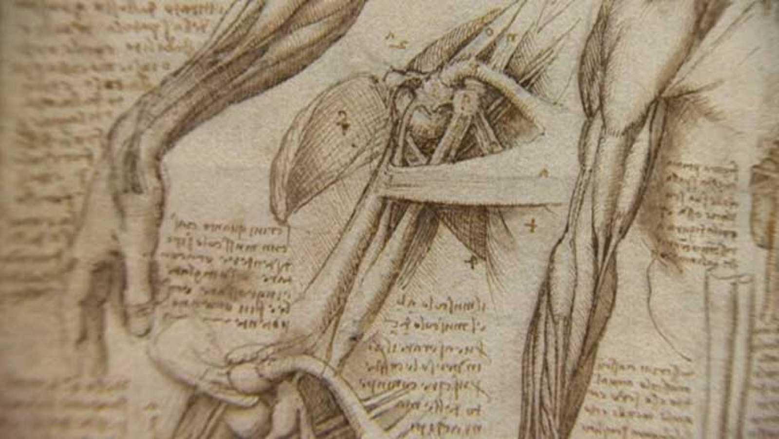 Una exposición que deja ver una faceta de Leonardo Da Vinci: La ...