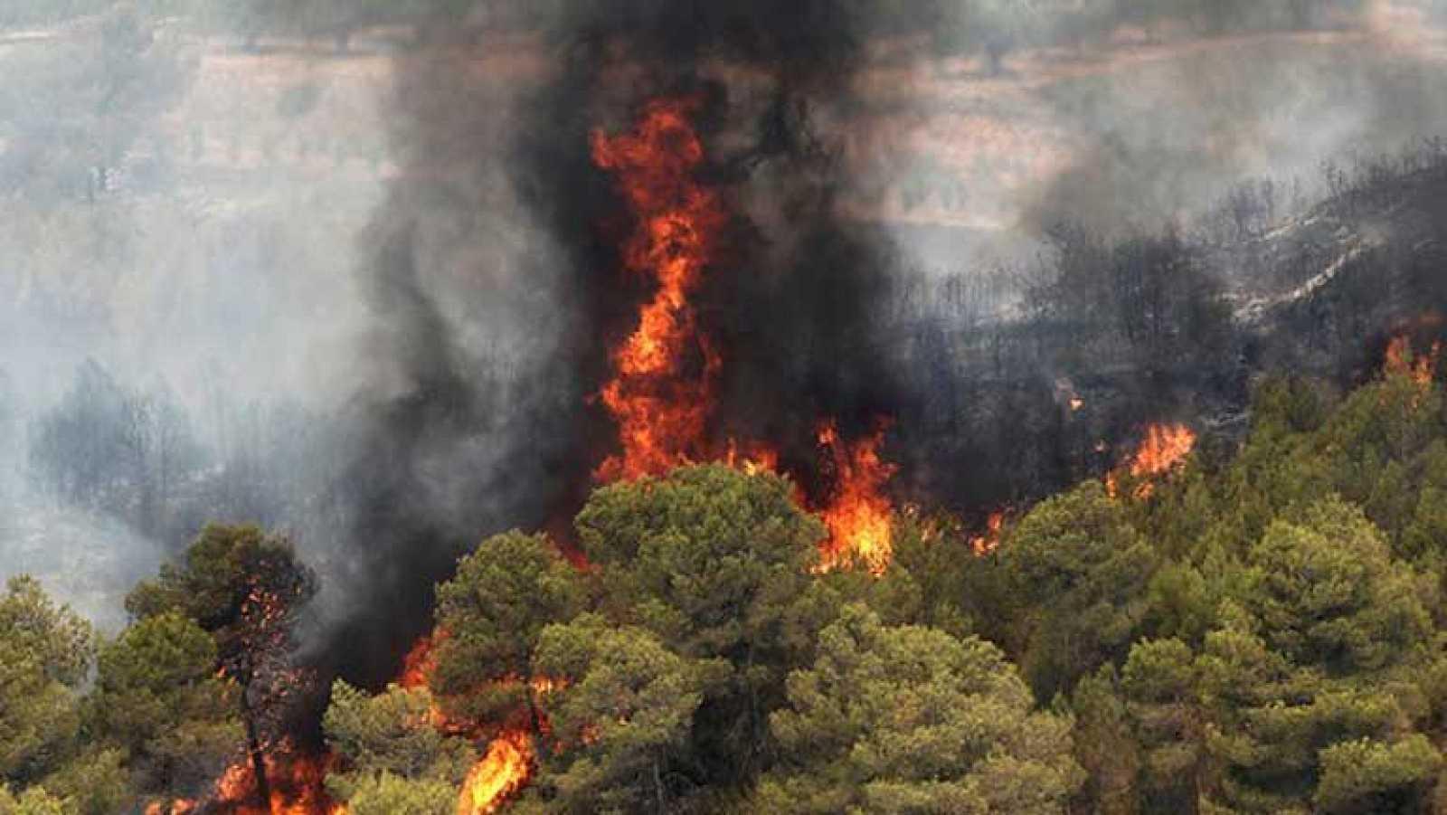 Los dos incendios de valencia siguen sin control y una for Cabanas en los arboles comunidad valenciana