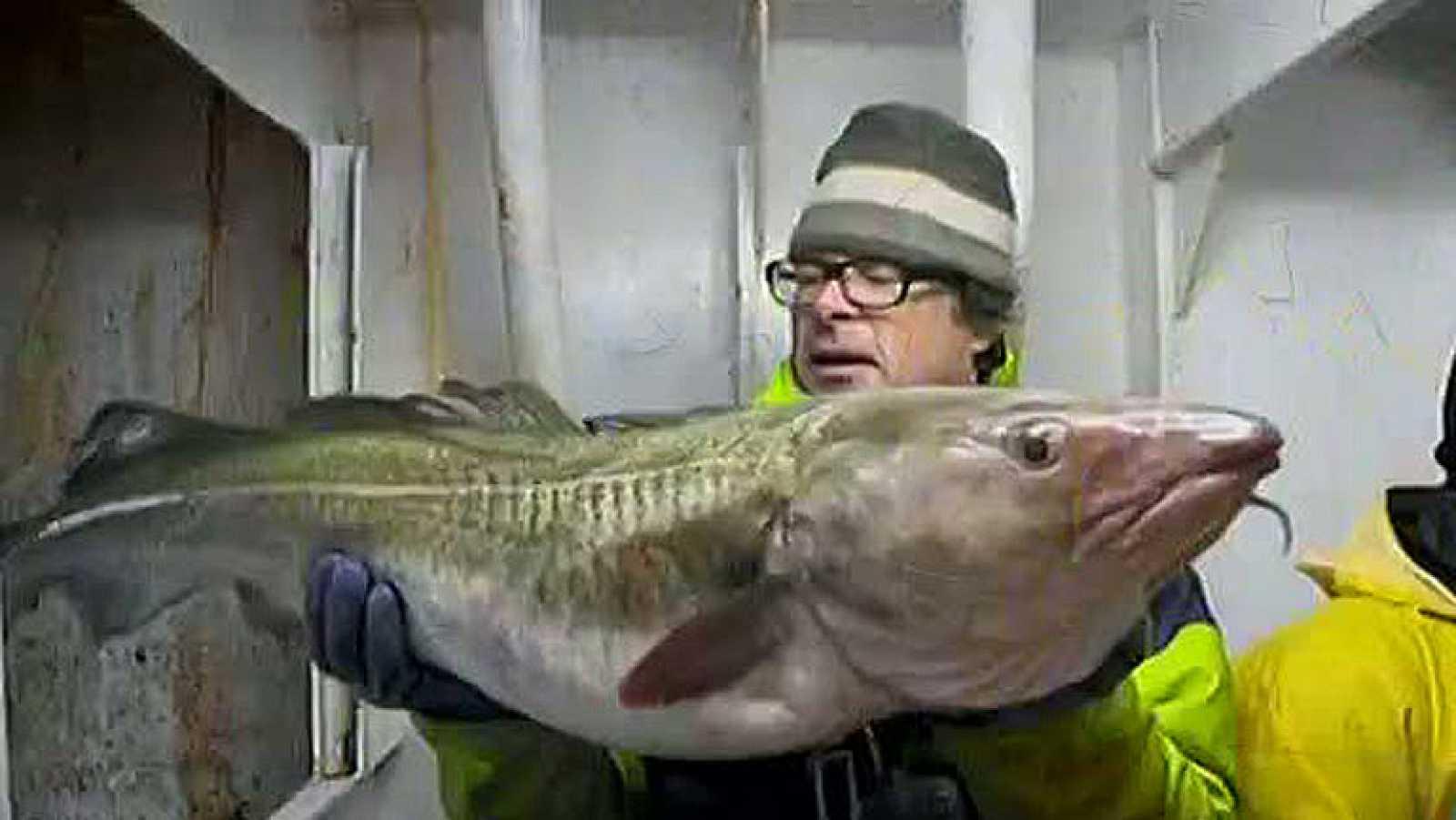 'Ni un pez por la borda'