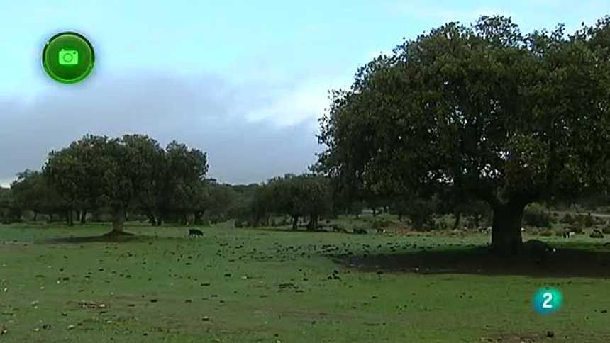 Agrosfera - En clave rural - La ruta del ibérico en Montánchez