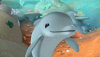 Los delfines del arrecife