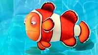 The clown fish syndrome