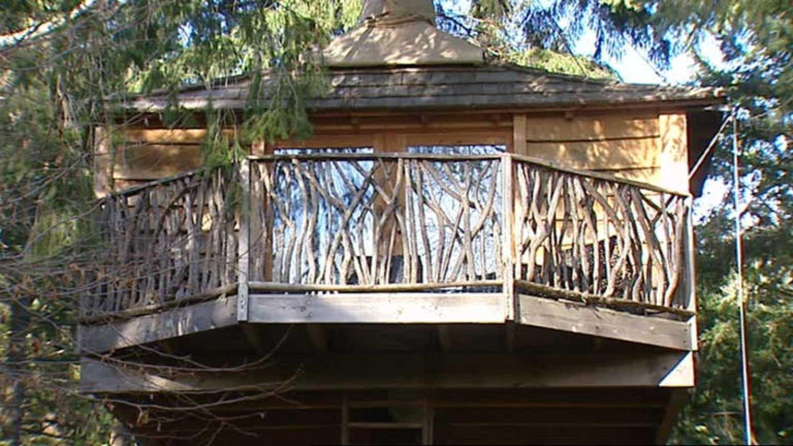 para todos los pblicos las casas en los rboles se ponen de moda reproducir video - Casas En Los Arboles