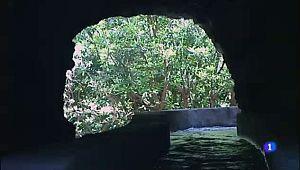 Nacientes de Marcos y Cordero - La Palma