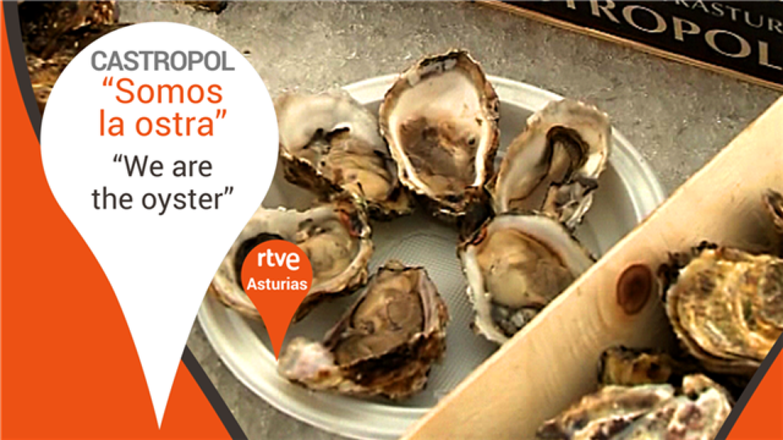 Somos la ostra - Castropol, Asturias - We are the oyster.