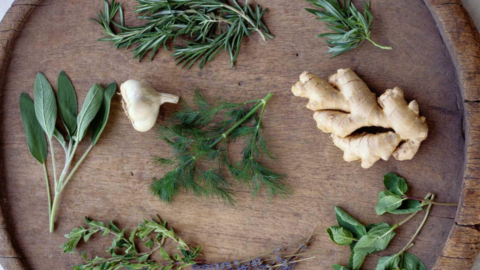 Saber Vivir - Plantas medicinales para el sistema urinario