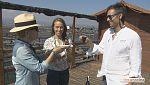 Tinc una idea - Delta de l'Ebre, el primer sake mediterrani