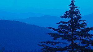 Parques nacionales norteamericanos: Las montañas Great Smoky