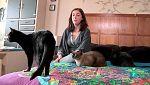 Más que perros y gatos - Capítulo 10