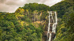 Tanzania: Parques Nacionales de Mikumi y Udzungwa