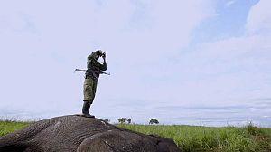 África extraordinaria: Los tesoros del Este
