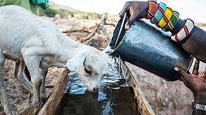 La Tierra: Un nuevo entorno natural: agua
