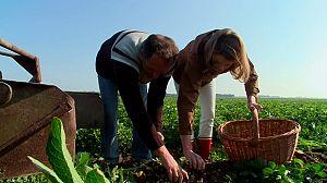 Las recetas de Julie: Isla de Noirmoutier