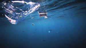 La mar de polímeros - Avance