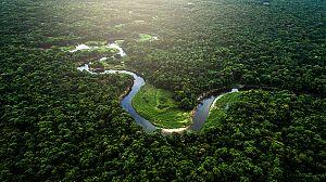 El Amazonas de Oriente: La fuente de la vida