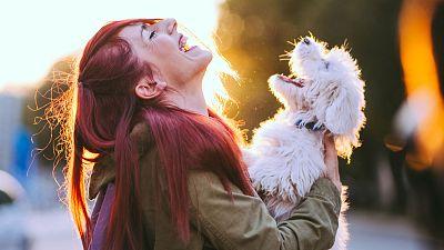 """Las mascotas pasarán a tener estatus jurídico de """"seres vivos dotados de sensibilidad"""""""
