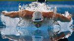 Natación - Campeonato de Europa Piscina corta. Sesión vespertina. Semifinales y finales - 14/12/17