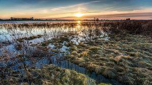 Holanda salvaje: Bajo el nivel del mar