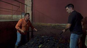 El curioso estilo de Roberto para pisar uvas