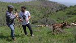 Aquí la tierra - Cabras cada vez mejores