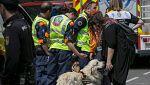 Búsqueda a contra reloj de los obreros desaparecidos en el derrumbe de un edificio en Madrid