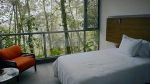 Hoteles increíbles: Marina Mashpi Lodge, Ecuador