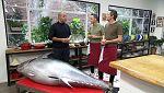 Torres en la cocina - Ensalada de legumbres y onigiri de atún