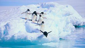 La magia del Gran Azul. Los siete continentes: La Antártida
